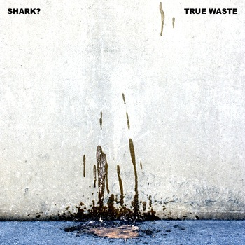 True Waste by Shark?