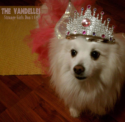 strange girls don't cry by the vandelles