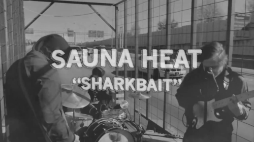 sharkbait by sauna heat
