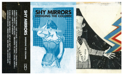 shy mirrors