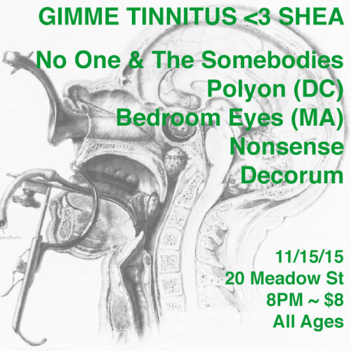 show :: 11/15/15 @ Shea Stadium > No One and The Somebodies ~ Polyon ~ Bedroom Eyes ~ Nonsense ~ DECORUM