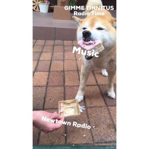 podcast :: GIMME TINNITUS Radio Time > 2/25/18