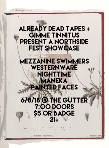 show :: 6/8/18 @ The Gutter > Already Dead Tapes + GIMME TINNITUS present a Northside Fest Showcase